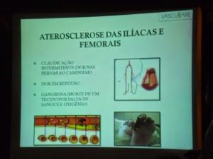 Palestra prevençao Doenças vasculares 022