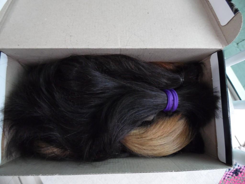 campanha cabelo para HCBarretos 024